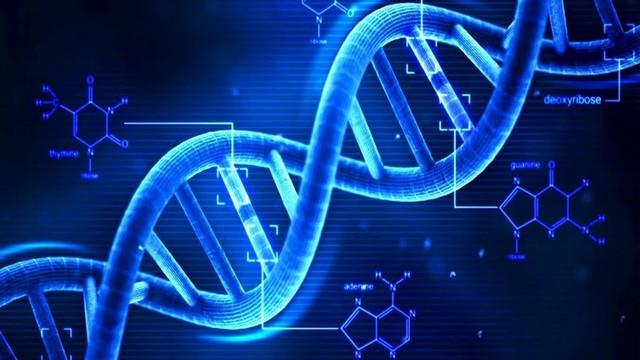 Rantai DNA